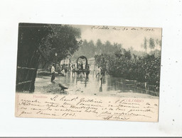 COLOMBO FLOODTIME 1902 - Sri Lanka (Ceylon)