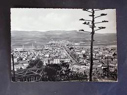 SICILIA -AGRIGENTO -LICATA -F.G. LOTTO N°748 - Agrigento