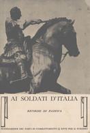 Padova  Ai Soldati D'Italia Federazione Fasci Di Combattimento FG P620 - Padova