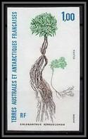 92603 Terres Australes Taaf N°164 Plante à Coussin Plant Colosanthus Kerguelensis Non Dentelé Imperf ** MNH - Geschnitten, Drukprobe Und Abarten