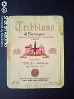 TREBBIANO DI ROMAGNA TENUTA AMALIA, VILLA VERUCCHIO - ETICHETTA - ÉTIQUETTE - White Wines