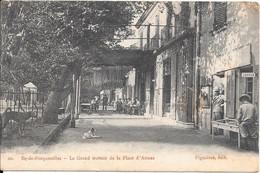 Ile De Porquerolles - Le Grand Trottoir Et La Place D'Armes - Porquerolles