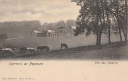 Environs  De  PEPINSTER - Parc Des Mazures  , ( Nels , Série 96 ,n° 19  ) Vache Bovin - Pepinster
