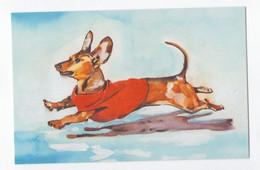 Card Dachshund Teckel Dackel Dog Hund Chien Perro Cao Cão 15,3 X 9,8 Cm Not Circulated - Hunde