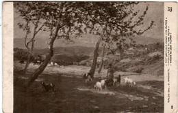51ez 146 CPA - PARIS - SALON 1910 - PATURAGES DANS LES AMPES - G. AMORETTI - Non Classificati