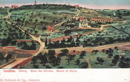 CPA - Israel - Jerusalem, Ölberg. Mont Des Oliviers - Israele
