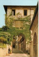 ASOLO - PORTA DELLO SPIRITO SANTO (TV) - Treviso