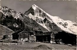 La Dent Blanche Vue De La Forclaz D'Herens (9402) * 2. 8. 1946 - Phot. Gyger - VS Valais
