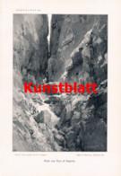 776 Neruda Christomannos Compton Rosengartengruppe 3 Artikel 1897-99 !!                                           . - Revistas & Periódicos