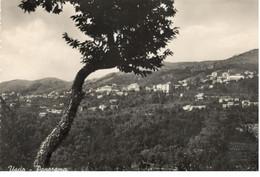USCIO (GENOVA) - Panorama - Editore Oliva Luigia - Other Cities