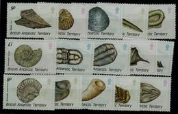 BRITISH ANTARCTIC TERRITORY 1990 SHELLS MI No 156-70 MNH VF!! - Marine Life
