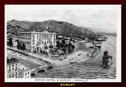 1920 C. Italia Italy RAPALLO Cartolina GRAND HOTEL & EUROPE Nuova Unused Postcard - Other Cities