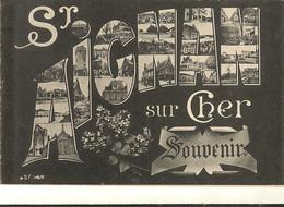 41 -   SAINT AIGNAN - Souvenir Multivues Dans Les Lettres   114 - Saint Aignan