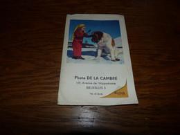 Pochette Photo Kodak De La Cambre Chien Saint-Bernard - Fotografía