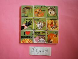 Serie Complète De 9 Feves Perso En Porcelaine - PUZZLE LIMOUSIN ( Feve Figurine Miniature ) Rare - Regiones