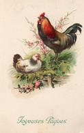 DC3902 - Schöne Motivkarte, Hahn Und Henne, Ostende 1923 - Pájaros