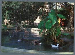 °°° Cartolina - Sciacca Villa Comunale Il Laghetto Con Cigni Anatre E Volateli Acquatici Preziosi Nuova °°° - Agrigento