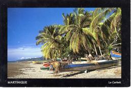 Martinique France Plage Carbet Palmier Barque Mer Ocean Sable Ile - Martinique