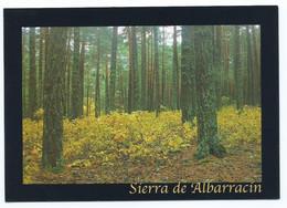 SIERRA DE ALBARRACIN - Agricultura