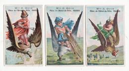 Chromo   OUIN  à Troyes    Lot De 3    Hommes Et Fusil Sur Des Oiseaux     11.3 X 7.3 Cm - Andere