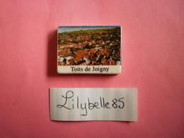 Feve PERSO En Porcelaine - TOITS DE JOIGNY - CHEVALIER JOIGNY 2012  ( Feves Figurine Miniature ) - Regio's
