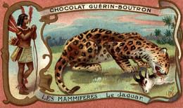 CHROMO CHOCOLAT GUERIN BOUTRON LE JAGUAR - Guerin Boutron