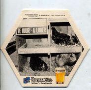 Sous-bock Biere Hoegaarden Theme Poule - Portavasos