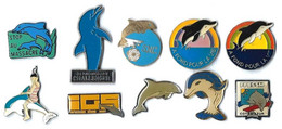 DAUPHINS - DA2 - LOT 10 Pin's Différents - Verso : DIVERS - Badges
