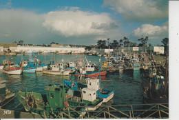 29 Le Port De Peche De LOCTUDY  - - Loctudy
