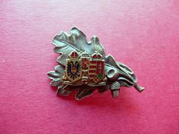 Distintivo Metallico Indivisibiliter Ac Inseparabiliter Tirolo WW1 1915-18 Raro - Autres