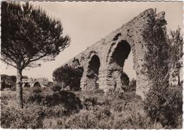 FREJUS - Aqueduc Romain - CPSM GF - Frejus