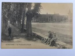 LE MALZIEU La Promenade Du Foirail - Otros Municipios