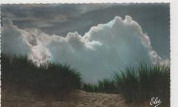 DEPT 33 : édit. L Chatagneau N° 567 : Bassin D'Arcachon La Dune Sauvage A L'océan - Arcachon