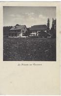 SUISSE - SEHR SELTEN / TRES RARE - Tavannes - La Noisette Sur Tavannes - 1913 - BE Berne