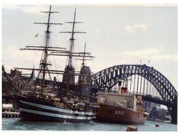 (P 28 A) This Is A Photo (not A Postcard) - Sailing Ship + Japanese Polar Ship 5002 - Fotos