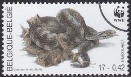 Specimen, Belgium Sc1798 WWF, Endangered Amphibian & Reptile, Snake, Common European Adder, Serpent - Unused Stamps