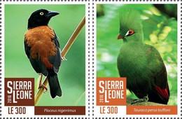 SIERRA LEONE 2016 ** Birds Vögel Oiseaux 2v - OFFICIAL ISSUE - A1708 - Autres