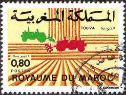 Maroc Poste Obl Yv: 953 Mi:1033 Touiza (Beau Cachet Rond) - Maroc (1956-...)