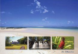 Ile Maurice    Le Sud - Mauritius