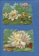 Beau Format Deux Chromo Decoupis Nénuphars Fleur NENUPHAR MARE - Flowers