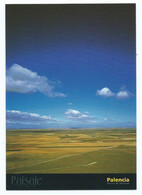 PAISAJE DESDE EL MIRADOR DE CAMPOS - AUTILLA DEL PINO / PALENCIA.- ( ESPAÑA ) - Agricultura
