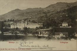 Suisse (SZ) Schwyz // Collegium 1905 - SZ Schwyz