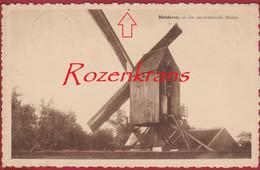 Malderen - De Eeuwenoude Molen Windmolen Moulin A Vent Windmill ZELDZAAM Londerzeel (duimspijkergaatje) - Londerzeel