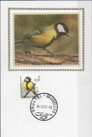 N° 2966 (Mésange Charbonnière) Sur Carte-maximum Soie - 1985-.. Birds (Buzin)