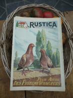 "Ancienne Revue Des Campagnes "" Rustica "" Sur La Nature Et Le Jardinage - 3 Avril 1955 - Giardinaggio"