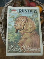 "Ancienne Revue Des Campagnes "" Rustica "" Sur La Nature Et Le Jardinage - 17 Avril 1955 - Giardinaggio"