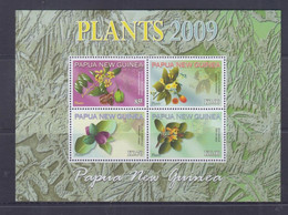 Papua New Guinea 2009 Plants Sheetlet MNH - Papua-Neuguinea