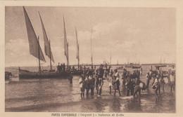 Sicilia - Trapani - Porto Empedocle - Imbarco Di Zolfo - F. Piccolo - Nuova  - Molto Bella Animata - Other Cities