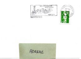 INDRE & LOIRE - Dépt N° 37 = ROCHECORBON 1992 =  FLAMME SECAP Illustrée LANTERNE 'VIGNOBLES + CAVES + VIN ' - Marcophilie (Lettres)