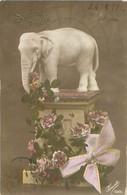 Fantaisie Elephant   N 1304 - Elefanten